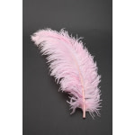Deluxe Plumes Large 18-28 Ostrich Feathers